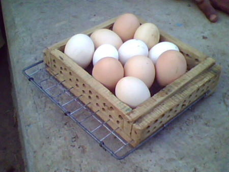 New Sliding egg tray ( domestic egg incubator)