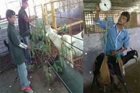 Goat farming training workshop